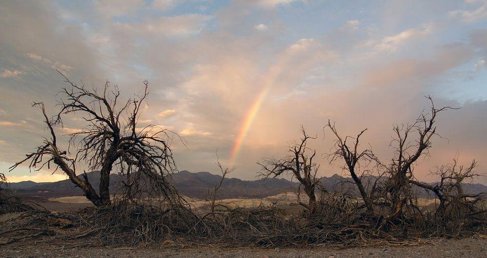 Death Valley Rainbow van Michiel Heuveling