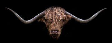 Highlander écossais sur Karel Ton