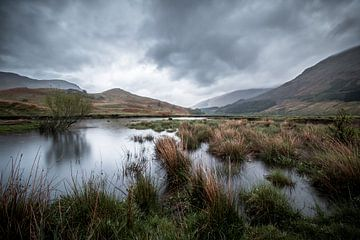 De Schotse wildernis van