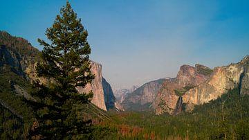 Uitzicht Yosemite  van Michelle van den Hondel