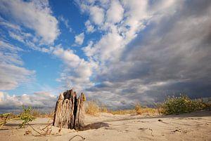 Paaltje op strand Schiermonnikoog