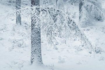 snowfall 1 van Erik de Jong