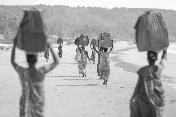 The Gokarna carriers