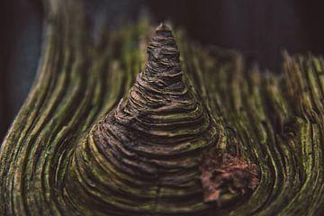 Hout Met Textuur. Prachtig stuk hout.                                               von Niek van den Berg