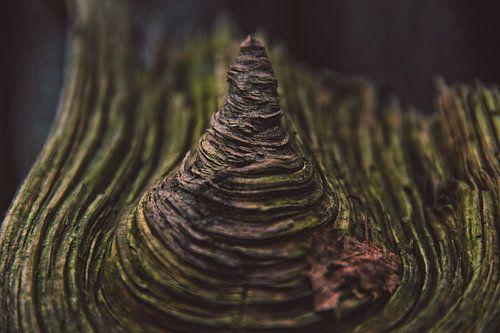 Hout Met Textuur. Prachtig stuk hout.                                               van