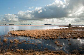 Rural Holland I von hillegonda sanders