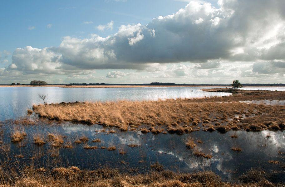 Rural Holland I