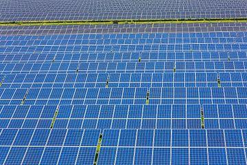 Veld vol blauwe zonnepanelen op een rij voor energievoorziening van Ben Schonewille