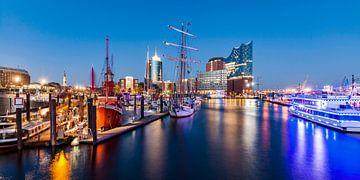 Haven van Hamburg met de Elbphilharmonie in Hamburg van Werner Dieterich