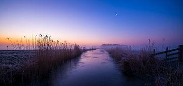 Purple dawn von Ronald Pit