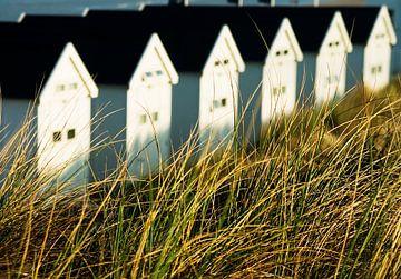 strandhuisjes sur