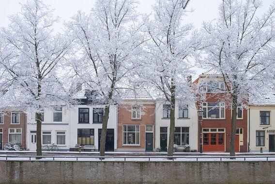 Huizen aan de Burgel gracht in Kampen met berijpte bomen in de voorgrond