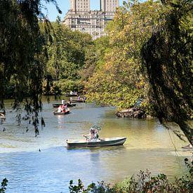 Nostalgische duiker in Central Park, New York van Arie Storm