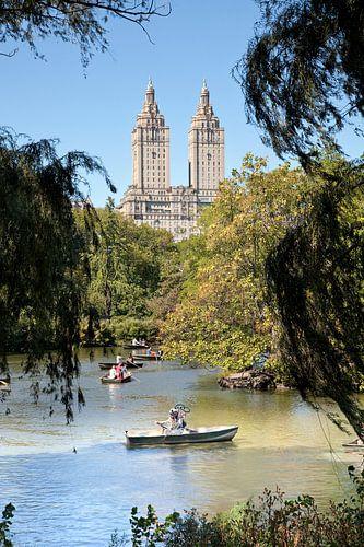Nostalgische duiker in Central Park, New York van