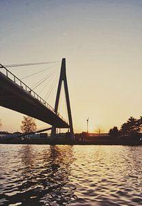 Brücke bereit von Goldeneyes