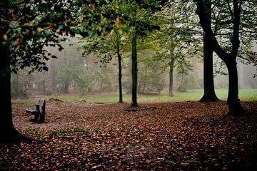 Herfst van Rob van Soest