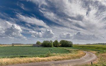 Landschap Zeeuws-Vlaanderen van Ellen Driesse