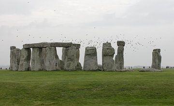 Stonehenge van Erika Zollner