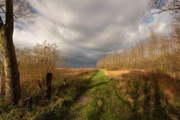 Dramatische lucht boven natuurgebied van Roel Bergsma