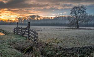 een koude start van Robin Pics (verliefd op Utrecht)