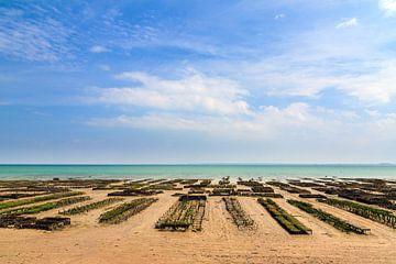 Oesterkwekerij op het strand in Cancale von Dennis van de Water