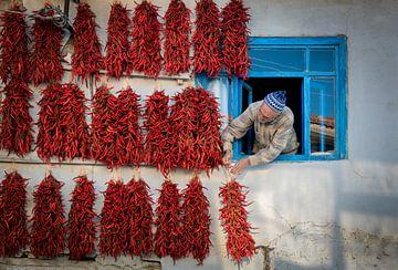 rode hete peper, Murat BAKMAZ van 1x