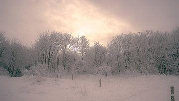 A winter's tale van Rik Verslype