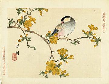 Zangvogel op bloeiende tak van Kôno Bairei
