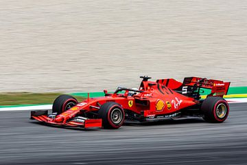 Sebastian Vettel van Erik Noort