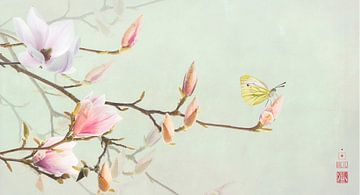 Magnolia en geaderd witje sur Fionna Bottema