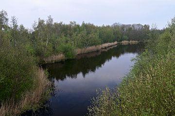 Blick auf einen See inmitten eines bewaldeten Parks von Jan Verschoor