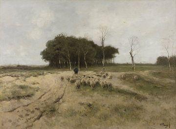 Heide in Laren - Anton Mauve