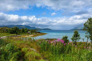 Noord Noorwegen van Joke Beers-Blom