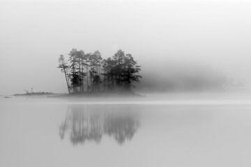 Insel im Nebel von