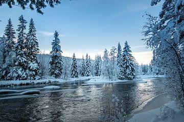 Witte wereld. van Marco Lodder
