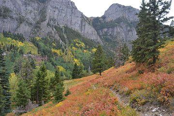 In de bergen van Colorado, Amerika van Bernard van Zwol