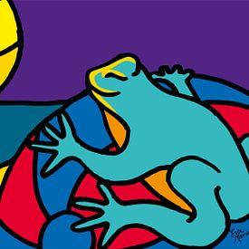 kikker met zon en strandbal van Eva van den Hamsvoort