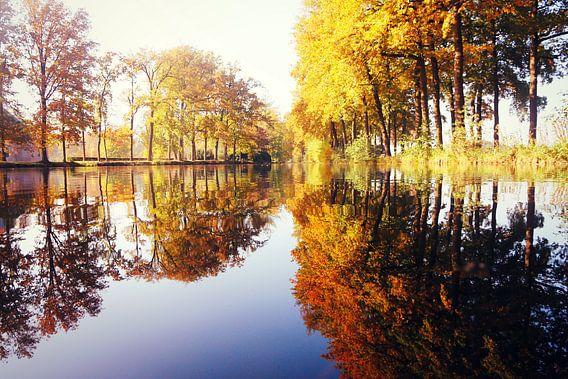 reflections...  van Els Fonteine