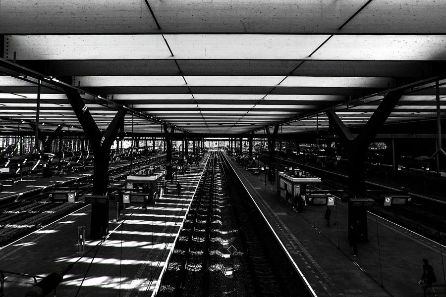 Rotterdam, C.S. insight
