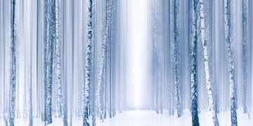 Blauwe winter van Violetta Honkisz
