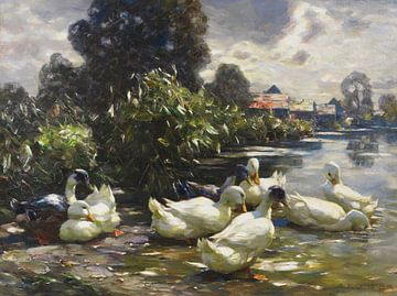 Acht Enten am Wasser, ALEXANDER KOESTER, Um 1915-1920 von Atelier Liesjes
