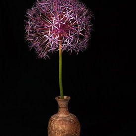 Fleur de l'avant sur Roland de Zeeuw fotografie