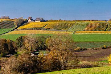 Das Jeker-Tal mit Blick auf den apostelhoeve in den warmen Herbstfarben von Kim Willems