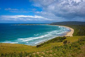 Baai Zuidkust, Nieuw Zeeland