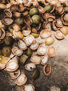 Kokosnoten / Ubud - Bali van Photo Atelier