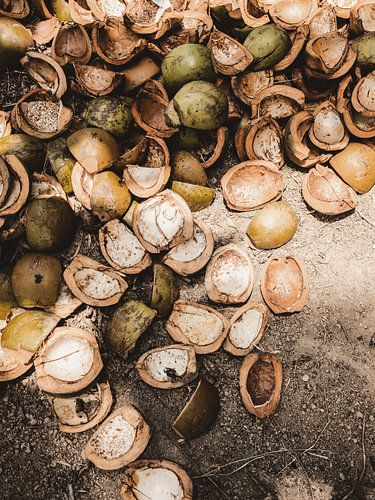 Kokosnoten / Ubud - Bali
