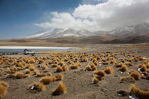 Lake Canapa, Atacama Desert, Bolivia
