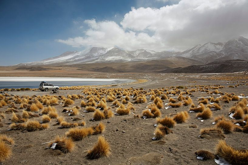 Lake Canapa, Atacama Desert, Bolivia van Tjeerd Kruse