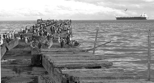 Alte Landungsbrücke in Punta Arenas van