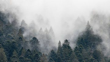 Mist in de bergen van Sam Mannaerts Natuurfotografie